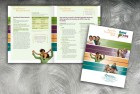Interactive booklet design for employee health benefits guide, Piedmont Healthcare